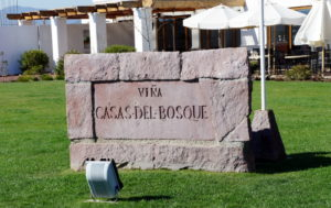 Vinícola Casas Del Bosque Chile, Tour Vinícola Casas Del Bosque